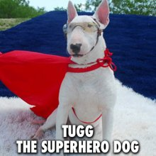 Tugg The Superhero Dog